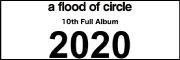 a flood of circle『2020』