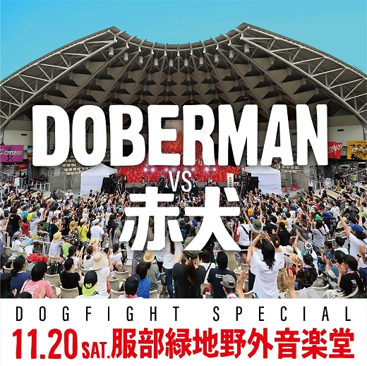 DOBERMAN / 赤犬